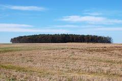Ландшафт, поле и голубое небо Стоковая Фотография RF