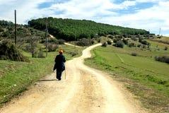 Ландшафт поля зеленой травы Стоковые Изображения