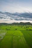 Ландшафт поля и горы Стоковые Изображения
