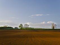 Ландшафт поля урожая подготовленный для засевать Стоковое Изображение