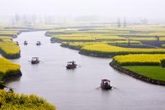 Ландшафт поля цветков рапса, пейзажа сельской местности Стоковые Фотографии RF