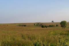 Ландшафт прерии на охраняемой природной территории Neal Смита Стоковое Изображение