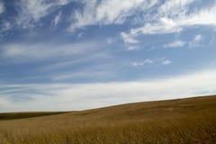 Ландшафт прерии с голубым небом Стоковое Изображение RF