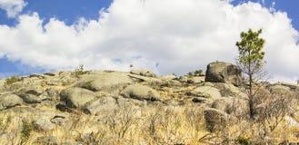 Ландшафт предпосылки заповедника Сьерры de Estrela Стоковые Изображения
