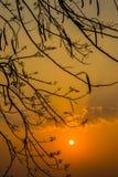 Ландшафт предпосылки природы Меконга Стоковое Фото