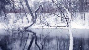 Ландшафт предпосылок зимы рождества акции видеоматериалы