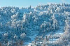 Ландшафт прикарпатских гор зимы украинский Стоковая Фотография RF