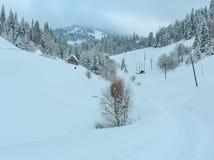 Ландшафт прикарпатских гор зимы украинский Стоковые Изображения RF
