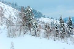 Ландшафт прикарпатских гор зимы Стоковое Изображение