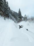 Ландшафт прикарпатских гор зимы Стоковые Изображения RF