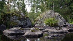 Ландшафт, природа, лето, портрет, Стоковое Изображение