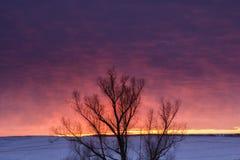 Ландшафт природы зимы вал захода солнца силуэта Стоковые Изображения RF