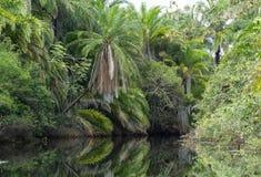 Ландшафт природы на реке Стоковая Фотография RF