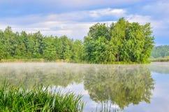 Ландшафт природы озером Стоковые Изображения