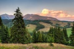 Ландшафт природы Стоковые Изображения RF