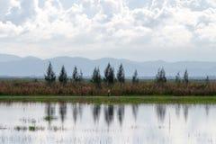 Ландшафт пруда с гористой предпосылкой Стоковая Фотография