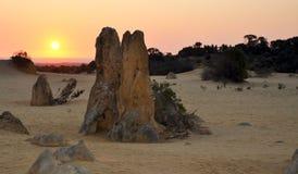 Ландшафт пустыни башенкы и заход солнца апельсина, западная Австралия стоковое изображение rf
