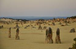 Ландшафт пустыни башенкы на сумраке, западной Австралии стоковые изображения