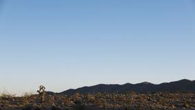 Ландшафт пустыни захода солнца Стоковые Изображения