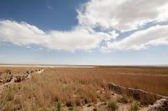 Ландшафт пустыни на Atacama, Чили Стоковое Фото
