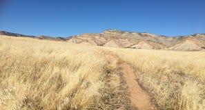 Ландшафт пустыни падения Стоковая Фотография