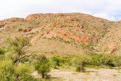 Ландшафт пустыни Namib в Намибии Стоковое Изображение