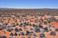 Ландшафт пустыни Namib, Намибия, Африка Стоковые Фото