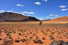 Ландшафт пустыни Namib, Намибия Стоковые Фото
