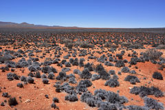 Ландшафт пустыни Namib, Намибия Стоковая Фотография