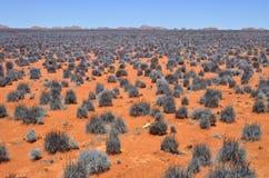 Ландшафт пустыни Namib, Намибия Стоковые Изображения