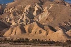 Ландшафт пустыни, Negev, Израиль Стоковая Фотография