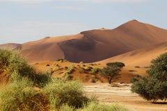 Ландшафт пустыни, Sossusvlei, Намибия Стоковые Фотографии RF