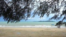 Ландшафт пляжа обрамленный листьями дерева акции видеоматериалы