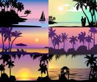 Ландшафт пляжа силуэта пальм природы каникул захода солнца nighttime лета тропический праздников острова рая Стоковая Фотография
