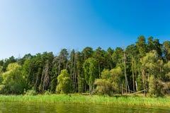 Ландшафт реки Волги стоковые фотографии rf