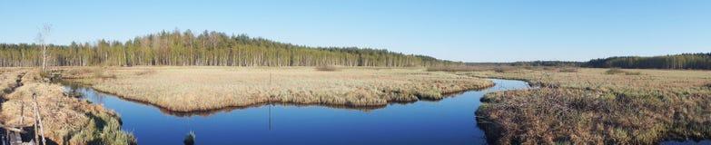 Ландшафт реки и леса Стоковое Изображение RF