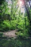 Ландшафт реки через внутренний район джунглей Стоковые Изображения