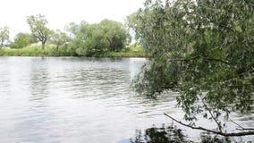 Ландшафт реки Havel (Бранденбурга Германии) вдоль Havelradweg (путь велосипеда Havel) акции видеоматериалы