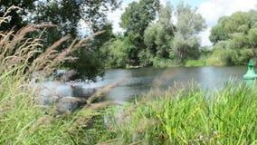 Ландшафт реки Havel (Бранденбурга Германии) вдоль Havelradweg (путь велосипеда Havel) видеоматериал