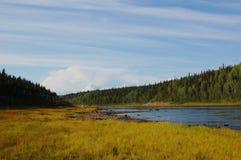 Ландшафт реки taiga Стоковое фото RF