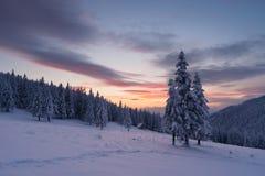 Ландшафт рождества с елью в снеге и домом в m Стоковая Фотография RF