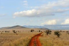 Ландшафт саванны в национальном парке в Кении Стоковые Изображения
