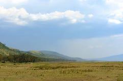 Ландшафт саванны в национальном парке Кении стоковые изображения