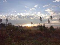 Ландшафт северная Финляндия Стоковое Изображение RF