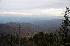 Ландшафт Северной Каролины Стоковое Фото