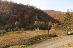 Ландшафт сельской местности в осени стоковое изображение