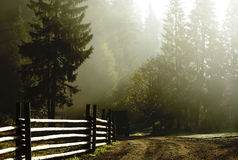 Ландшафт сельской местности в тумане и лучах света Стоковая Фотография RF