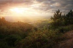 Ландшафт сельской местности Стоковые Фото