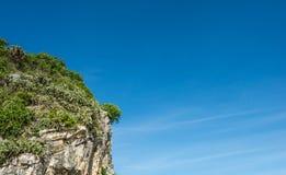 Ландшафт скалистой горы и дерева перед голубым небом Стоковые Фотографии RF