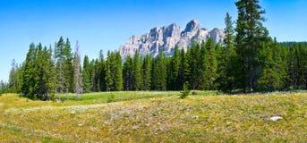 Ландшафт скалистых гор в национальном парке яшмы, Альберте, Канаде Стоковое фото RF